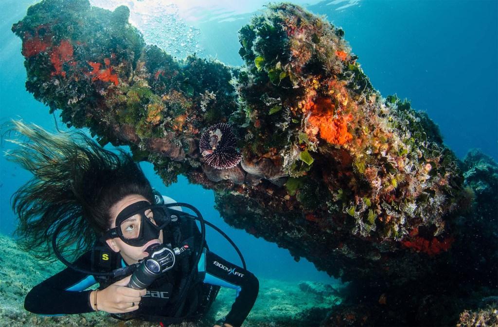 Discover Scuba Diving – bevezetés a búvárkodásba