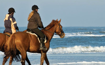 Horse-riding: